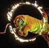 Цирки в Собинке